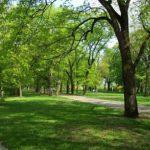 areas_verde